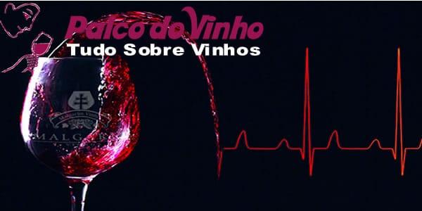 Benefícios do Vinho para saúde