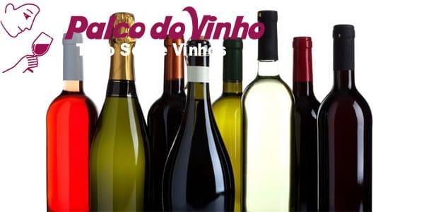 Os tipos de garrafas de vinho utilizadas no mercado