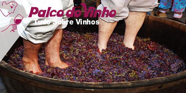 Como foi criado o vinho do Porto